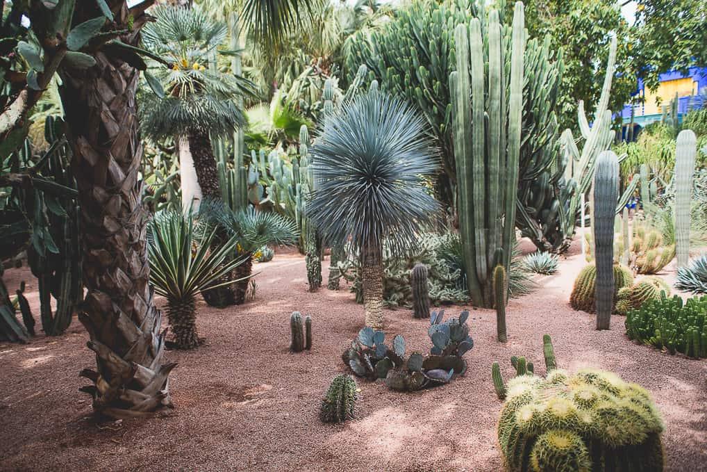 Jardim de Majorelle