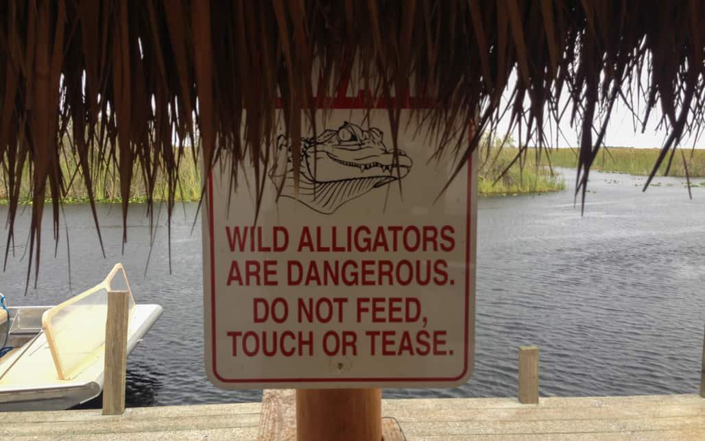 Everglades_04
