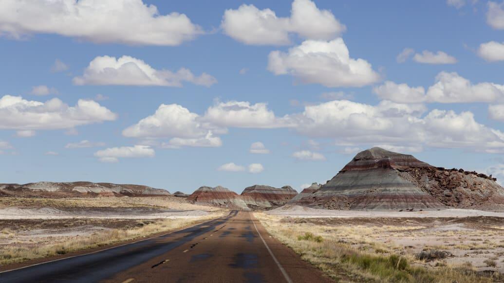 petrified-forest-estrada-reta