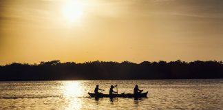 Ilha de Marajó: tudo o que você precisa saber