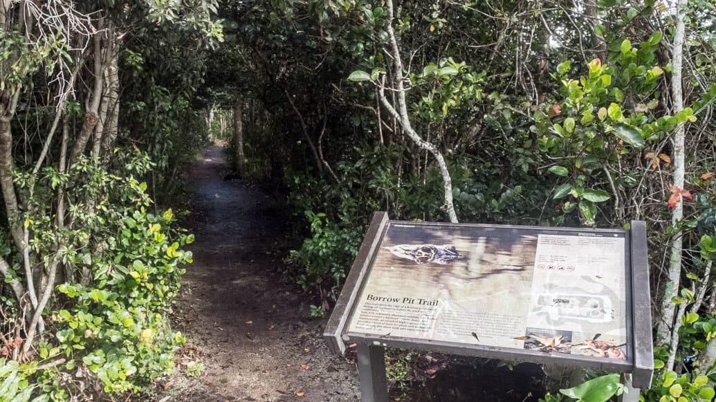 Everglades perto de Miami