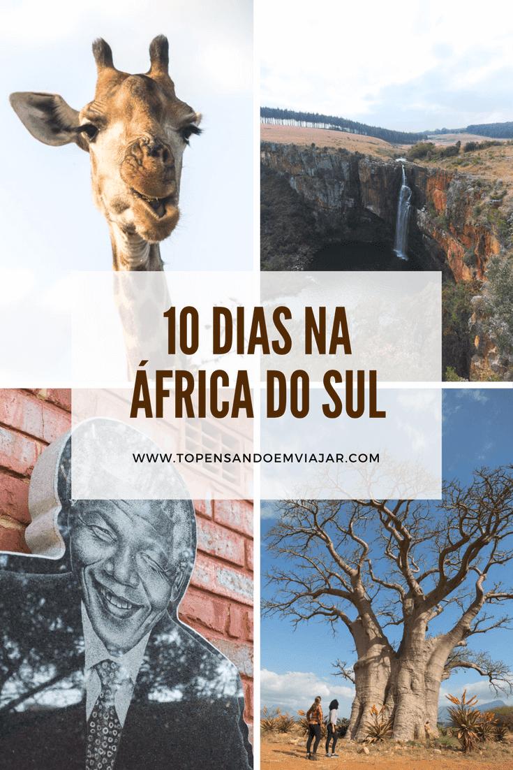 Roteiro de viagem: 10 dias na África do Sul
