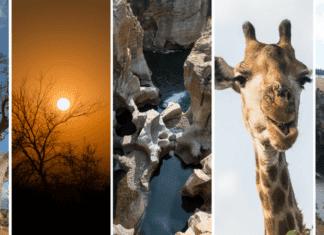 Roteiro de 10 dias na África do Sul