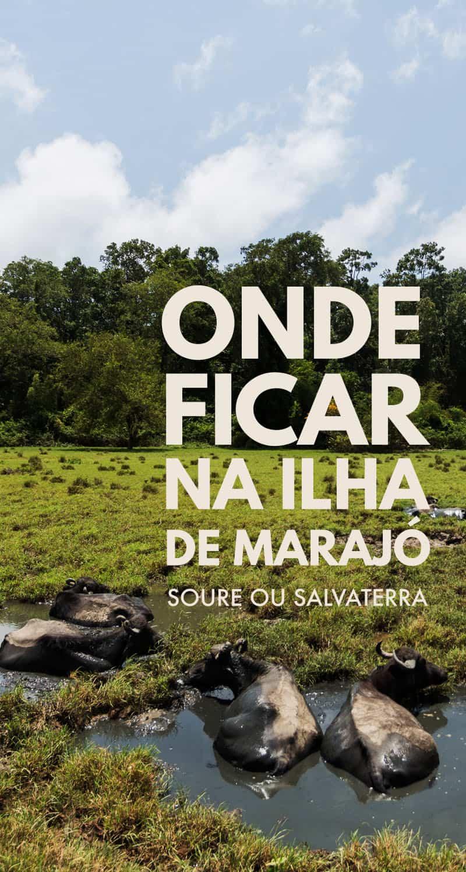 Confira dicas de onde ficar na Ilha de Marajó. Conheça as vantagens e desvantagens de se hospedar em Soure e Salvaterra, as principais cidades turísticas da Ilha de Marjó e encontre ótimas opções de hospedagem em ambas as cidades.