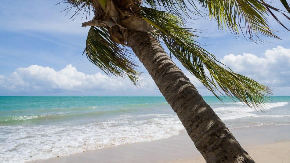 Roteiro de viagem pelo litoral norte de Alagoas