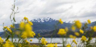 Patagônia Aysén: a Patagônia chilena como você nunca viu!