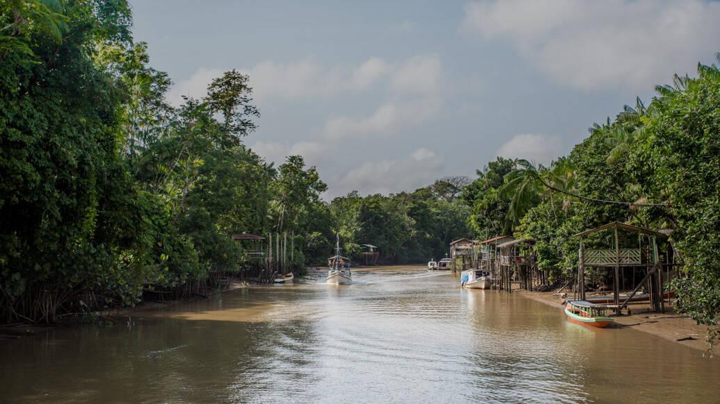Dicas do que fazer em Belém: Ilha do Combu