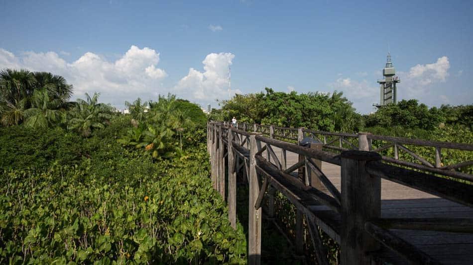 Dica do que fazer em Belém: visitar Mangal das Garças