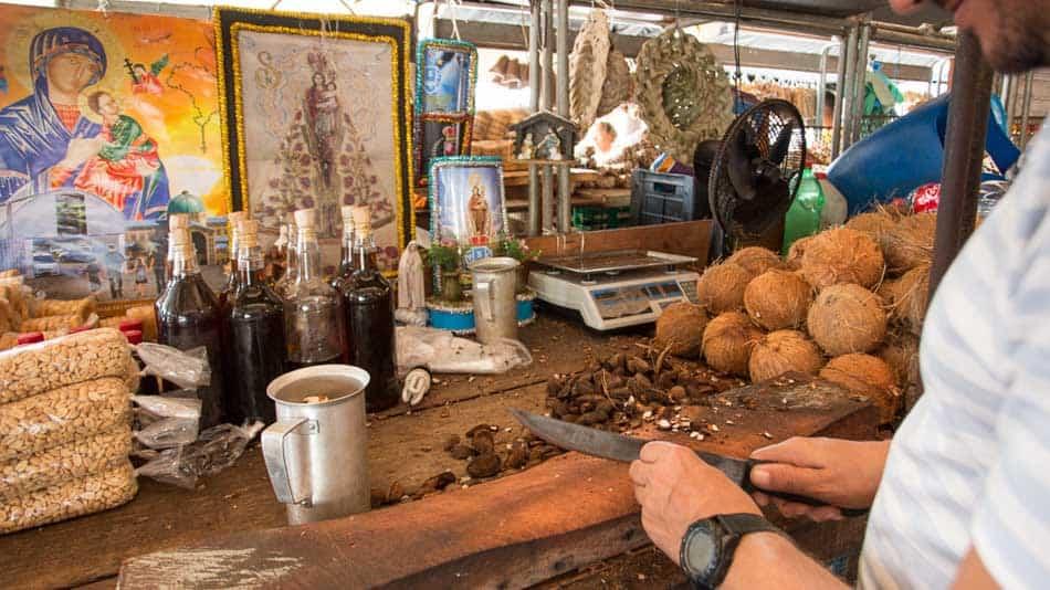 Dica do que fazer em Belém: quebrador de castanha do Brasil