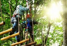 Orlando Lado B: Orlando Tree Trek Adventure Park