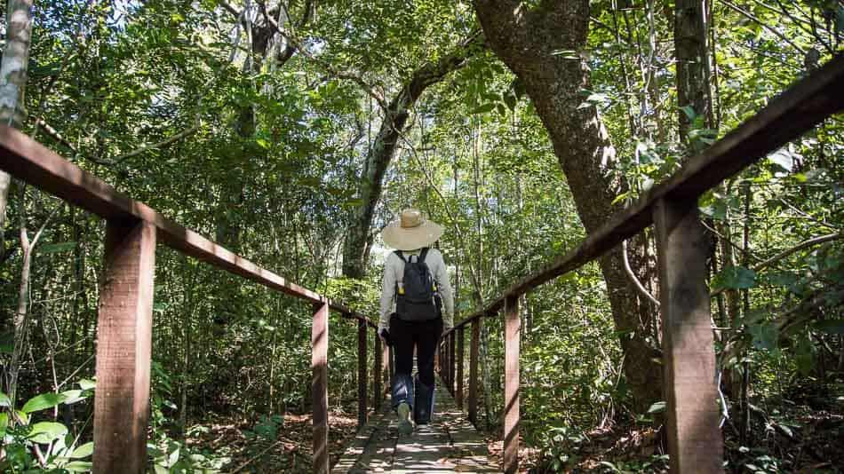 Trilha no Parque Estadual do Cantão