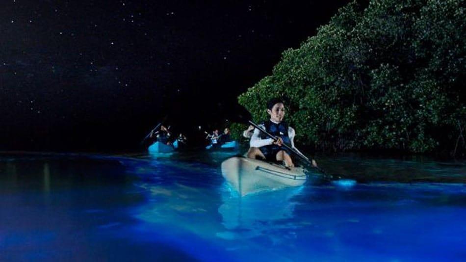 Baías bioluminescentes em Porto Rico