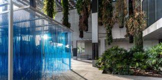 Pérez Art Museum: dica de museu em Miami, EUA