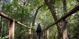 Seguro viagem nacional para o Tocantins