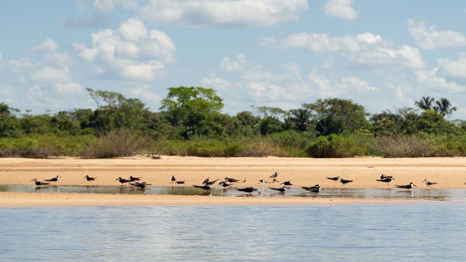 Praia no rio Araguaia, no Tocantins
