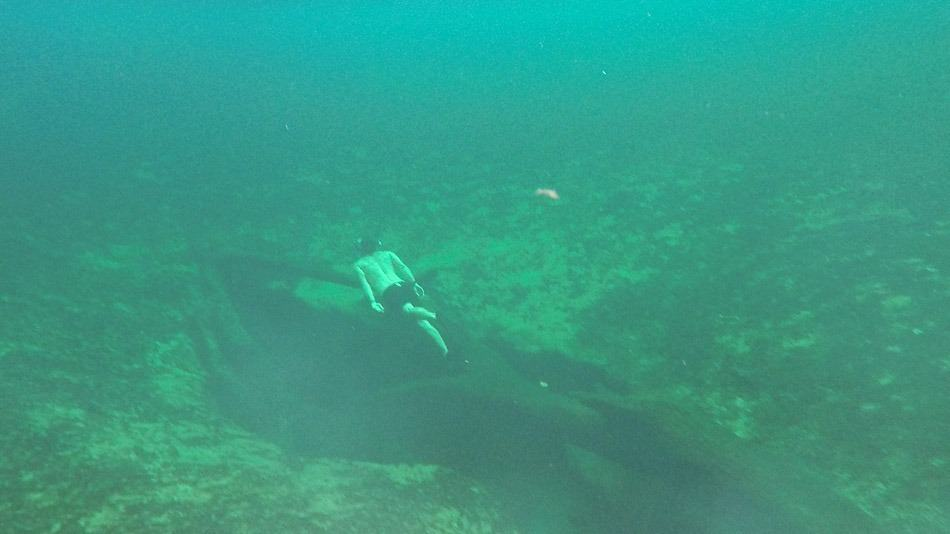 Mergulho no Blue Spring Park, em West Volusia, Flórida