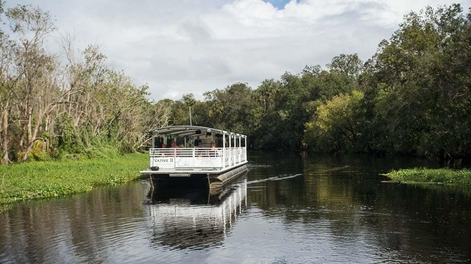 O que fazer em West Volusia: passeio de barco no rio St. John's