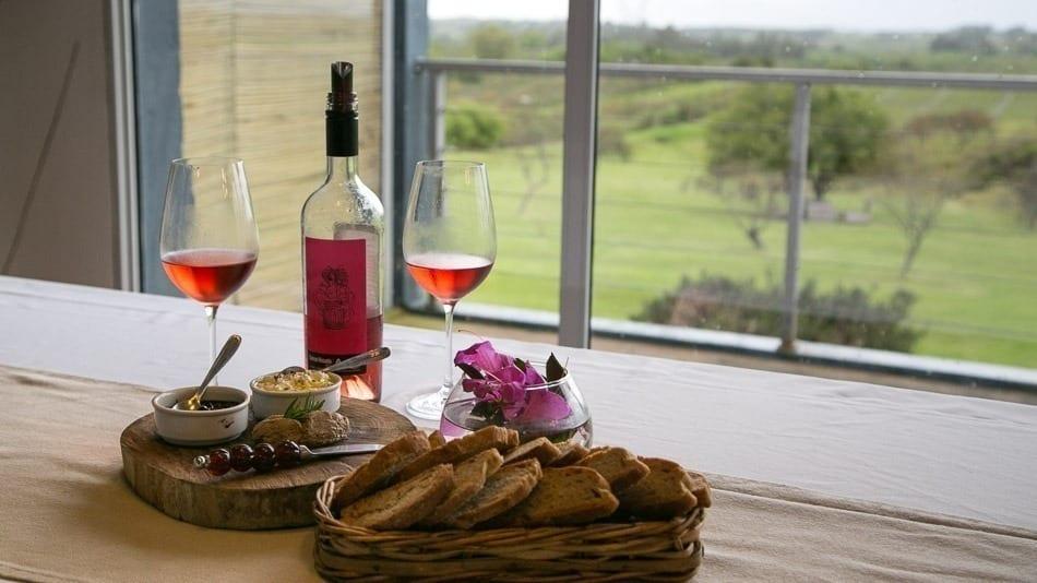 As melhores vinícolas do Uruguai