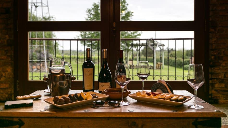 Degustação na Antigua Bodega, vinícola no Uruguai