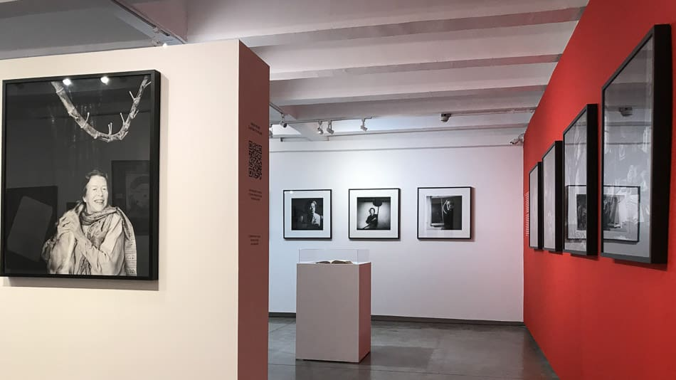 Revelando Hilda Hilst, exposição em SP