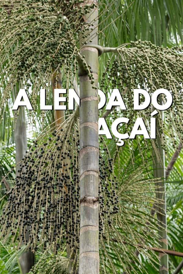 Conheça a lenda do açaí, o fruto que é um verdadeiro rei da Amazônia e cujo nome significa 'fruta que chora'.