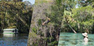 As melhores dicas de o que fazer em Ocala, na Flórida