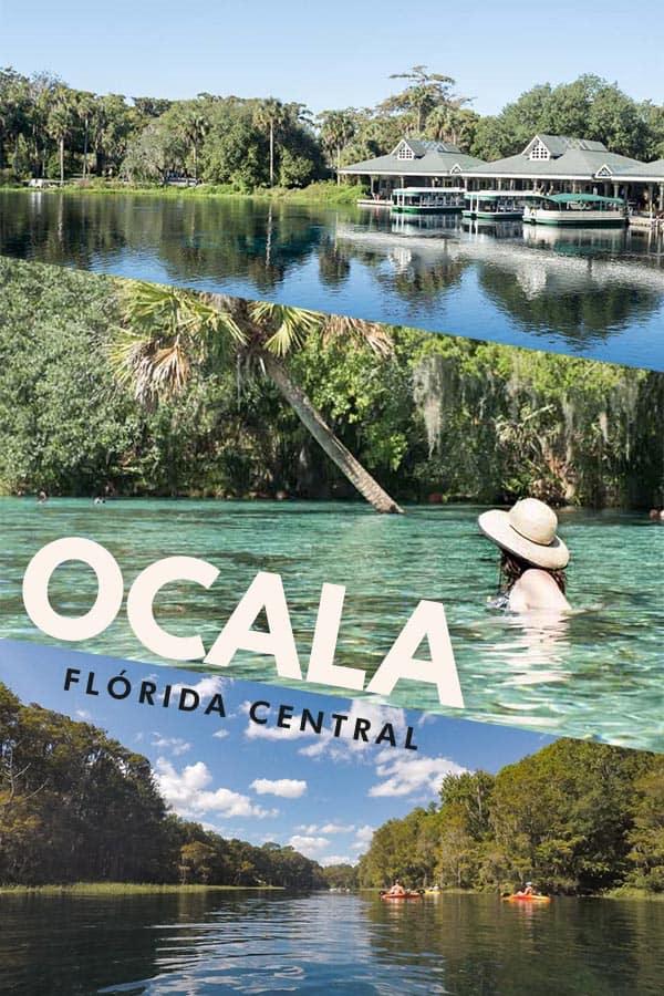 Confira as melhores dicas de o que fazer em Ocala, no condado de Marion, na Flórida Central. Surpreenda-se com belezas naturais únicas com charme clássico do sul dos EUA.
