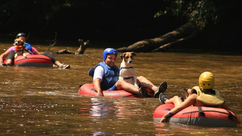 Day use pet friendly em SP: Rio Abaixo