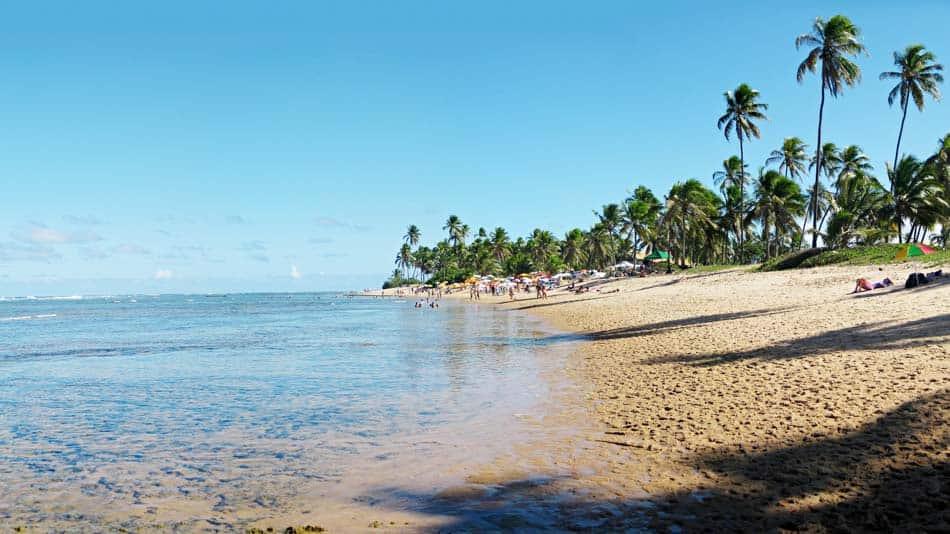 Guia completo do litoral norte da Bahia