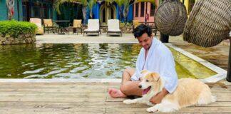 Dicas de pousada e hotel pet friendly em SP