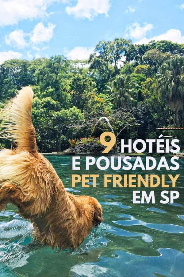 9 dicas de hotéis e pousadas pet friendly em SP