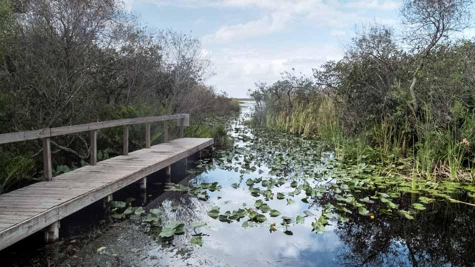 Trilha aquática no Everglades National Park