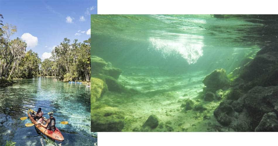 Three Sisters Springs perto de Orlando