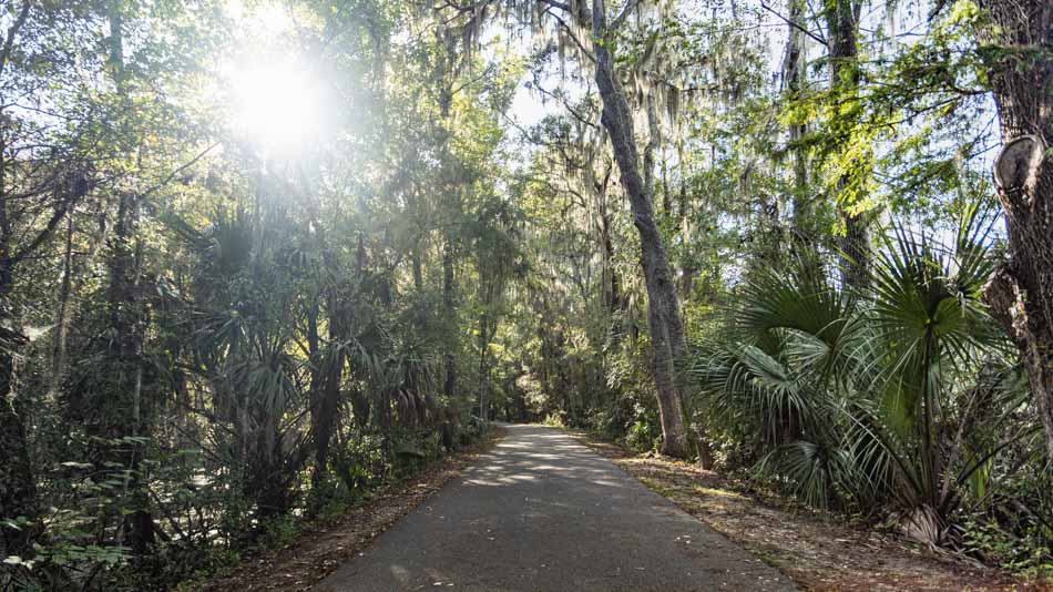 Trilha na natureza perto de Orlando