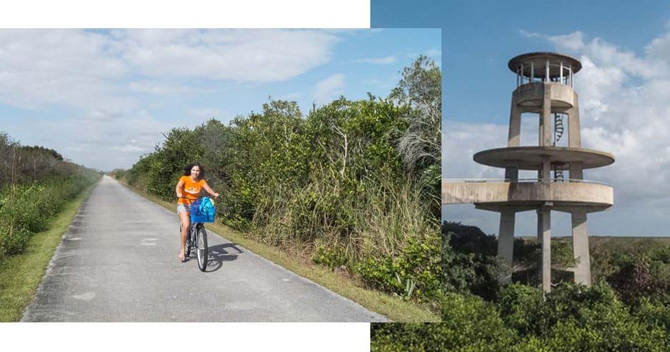 O que fazer na Flórida: trilha de bicicleta nos Everglades