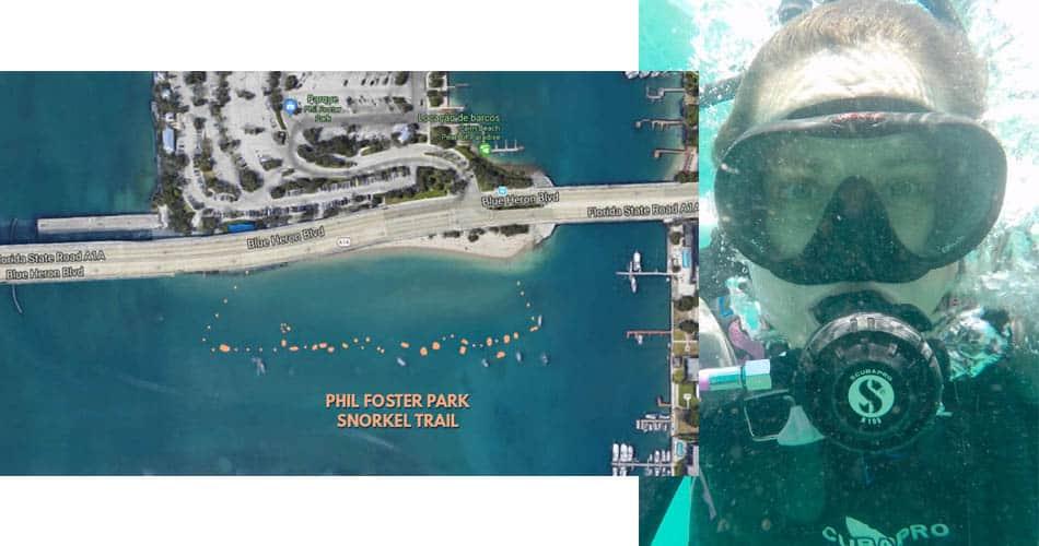 O que fazer na Flórida: mergulho no Phil Foster Park