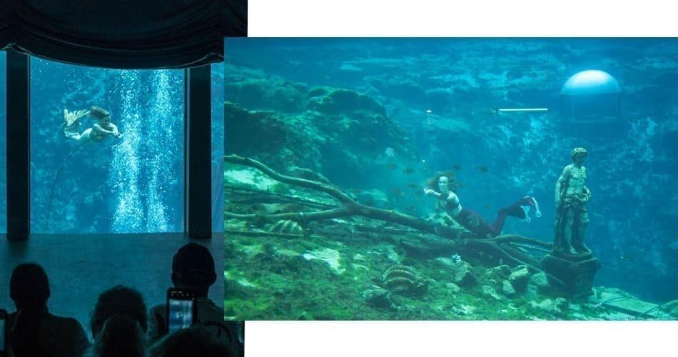 O que fazer na Flórida: show das sereias