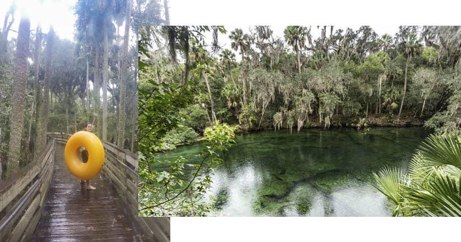 Atividades aquáticas no Blue Spring State Park perto de Orlando